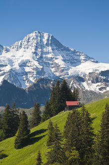<b>Switzerland</b><br>Selection of 206 items