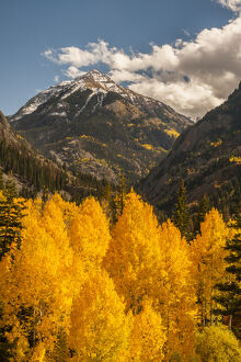USA, Colorado. Autumn landscape in San Juan Mountains
